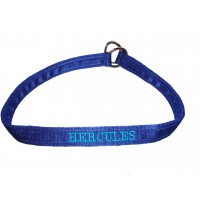 "Personalised Embroidered Dog Choker -1"" Wide"