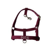 Personalised Embroidered Dog Halter