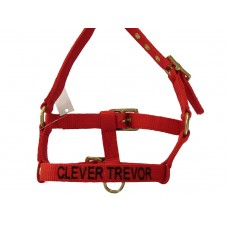 Personalised Embroidered Headcollar Miniature Foal Size